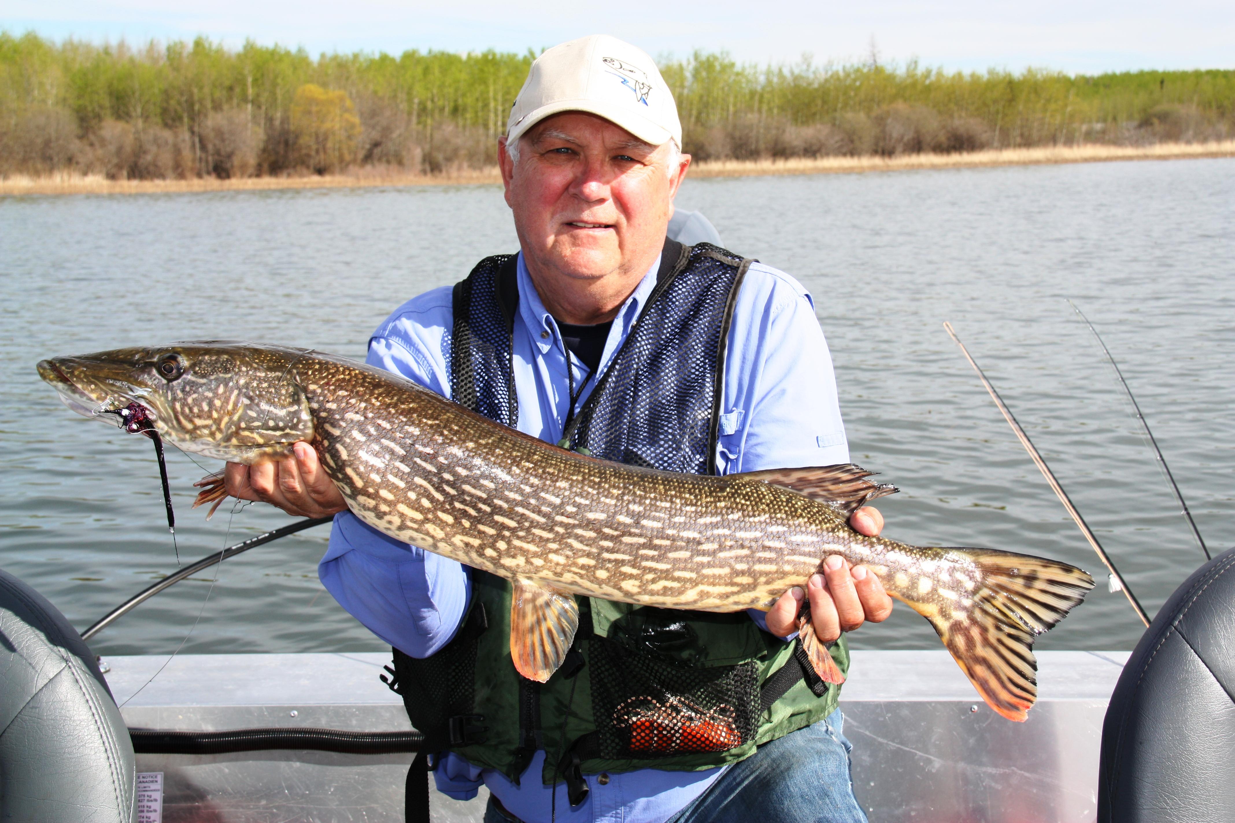 Wabamun lake alberta fishing regulations for Colorado fishing limits